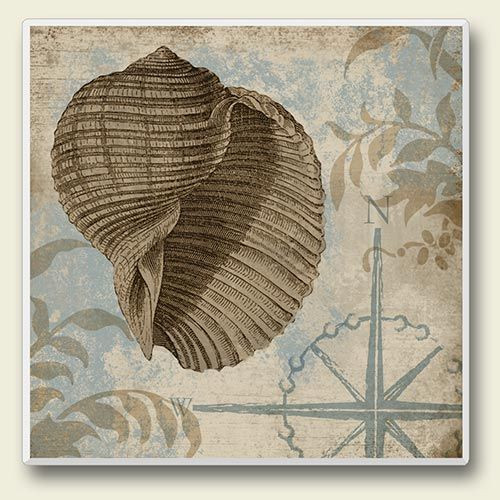 "Sea Shell Single Absorbent Coaster ""Shell II"" - 02-096"