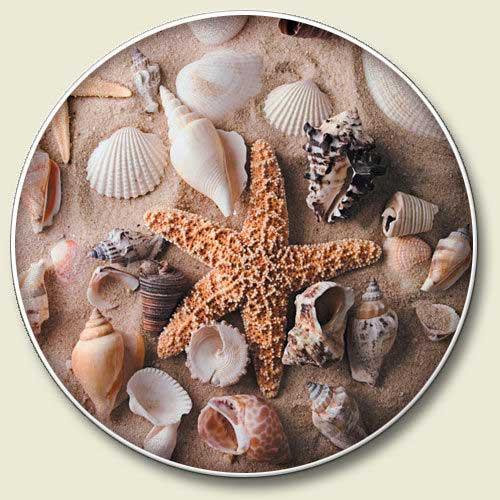 Beach Sea Shells Stone Car Coaster Cupholder CC-352