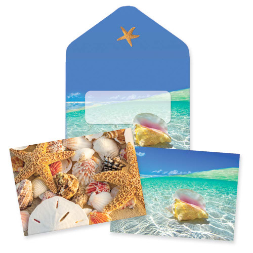 Tropical Shells Note Cards 10 Pack 09-060
