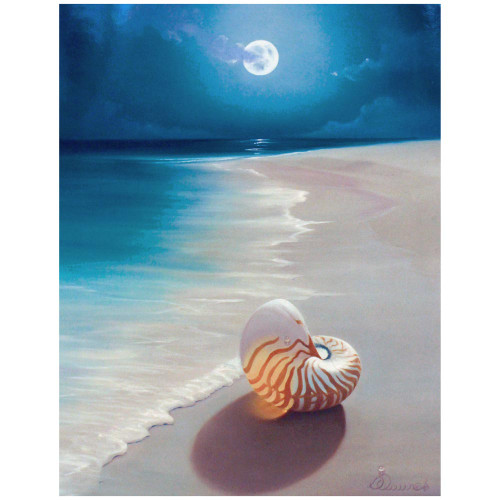 Sea Cove Moonlight Fantasy Blank Card BKG14821