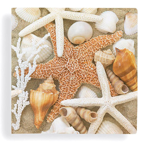 Beach Shells Starfish Cocktail Beverage Napkin 24 Count 15-231