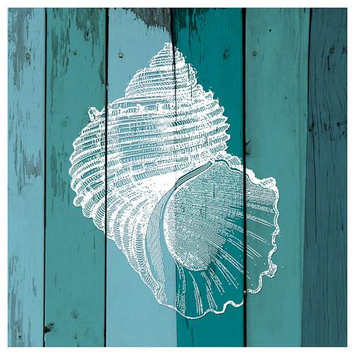 Shell on Blue Single Absorbent Coaster - SB73385