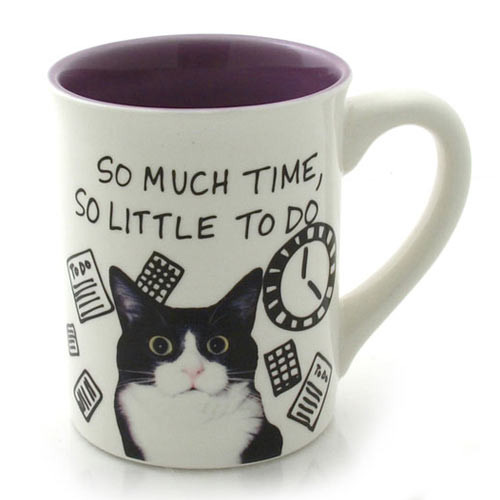 Cat Theme Mug So Little Time 4037268