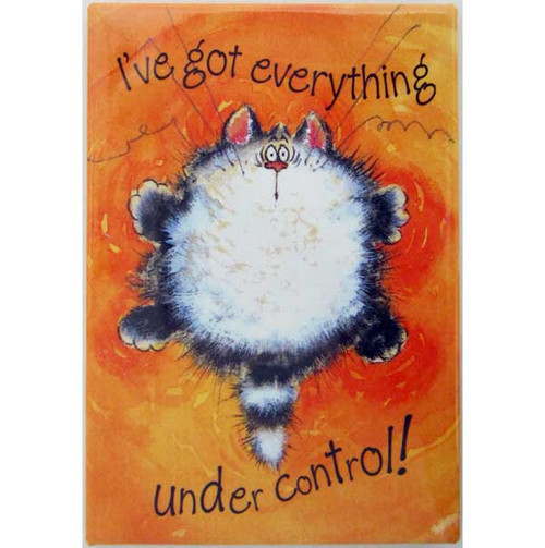 "Fluffy Cat Magnet ""Under Control"" MAG25309"