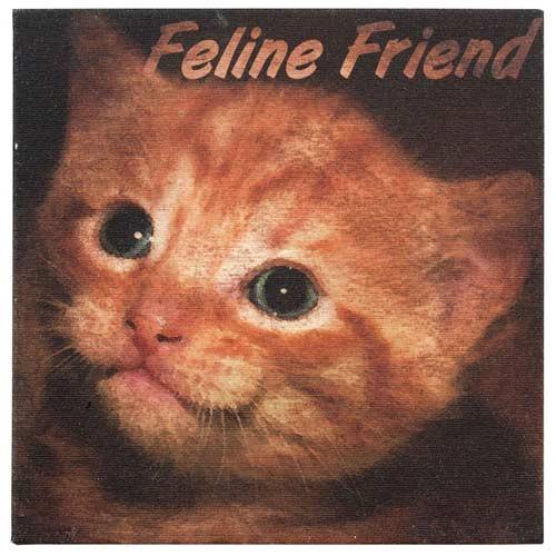 Canvas Cat Print - Feline Friend - Wall Art 35215