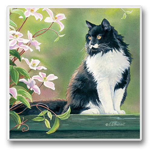 Black and White Cat on a Ledge - 4 inch - Stone Coaster - Sold Individually