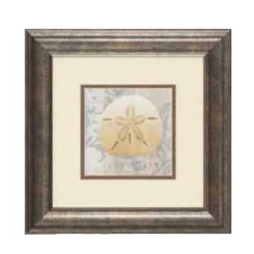 "Sea Shell Framed Art Print 13"" x 13"" Sand Dollar – 1597-I"