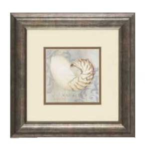 "Sea Shell Framed Art Print 13"" x 13"" Nautilus – 1597-II"