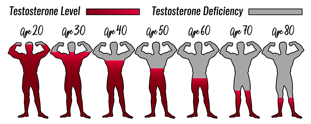 testo-levels-age-red2.png