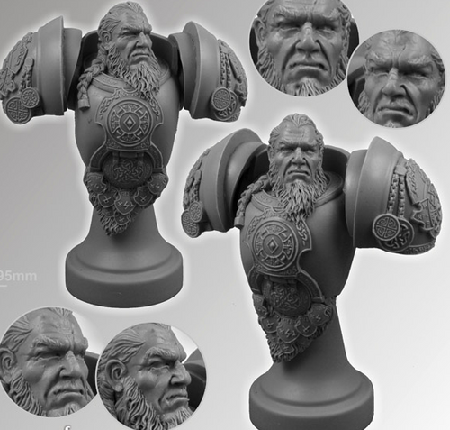 SF Celtic Warrior Bust007