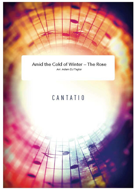 Amid the Cold Of Winter- The Rose