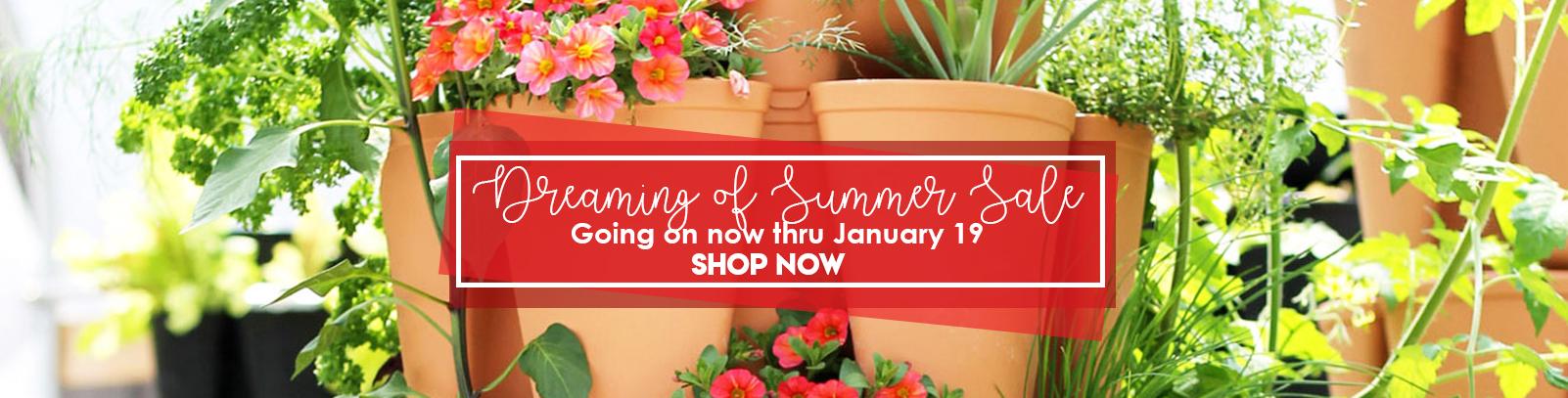 dreaming-of-summer-sale-january-greenstalk-garden-2.jpg