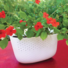 Wally Grow Eco Planter