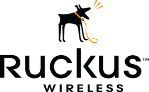 AP management license for SZ-100/vSZ 3.X, 1 Ruckus AP access point