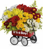 HCMC Baby's Wow Wagon Boy