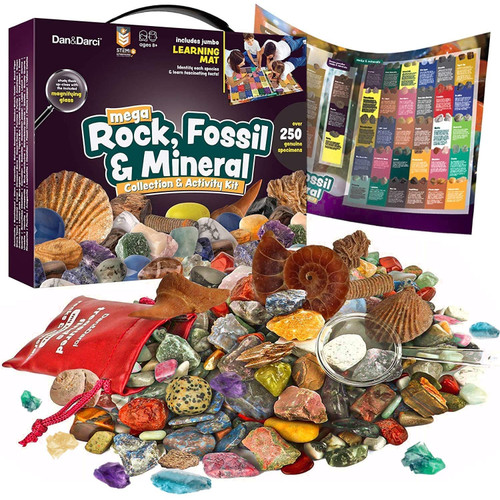 Mega Rock, Fossil, & Mineral Collection