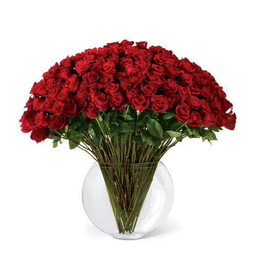 """Breathless"" Luxury Bouquet - 100 Red Rose"