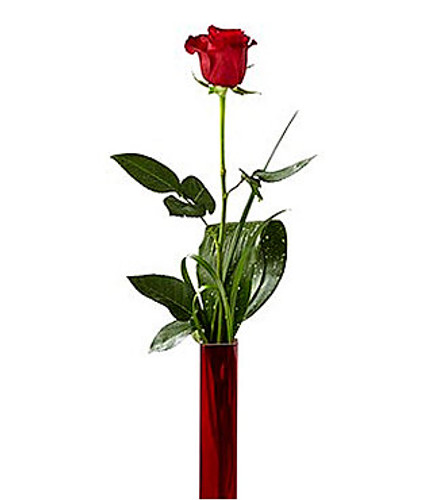 Deeply Devoted Single Red Rose  Bouquet