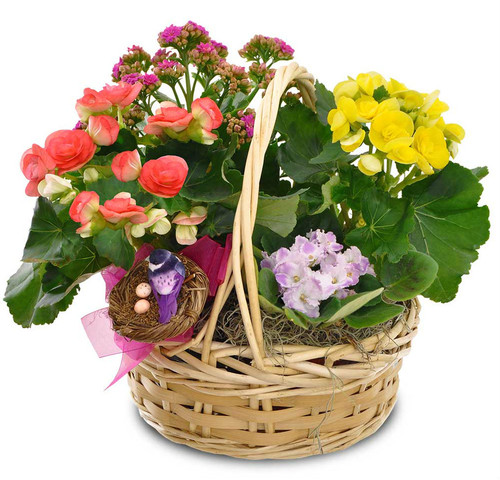 Bright Day Blooming Garden Basket