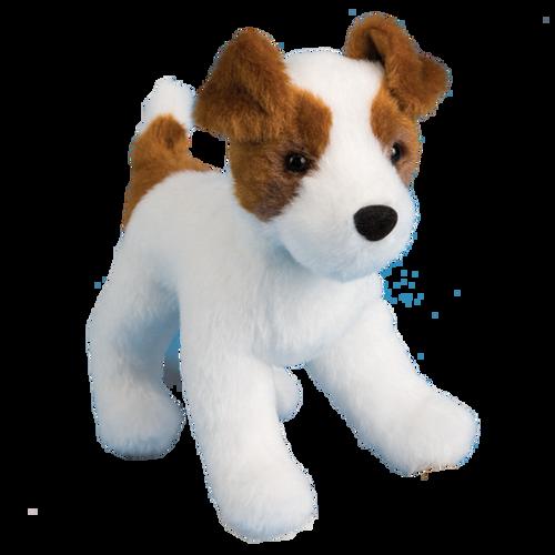 Feisty Jack Russell Terrier by Douglas
