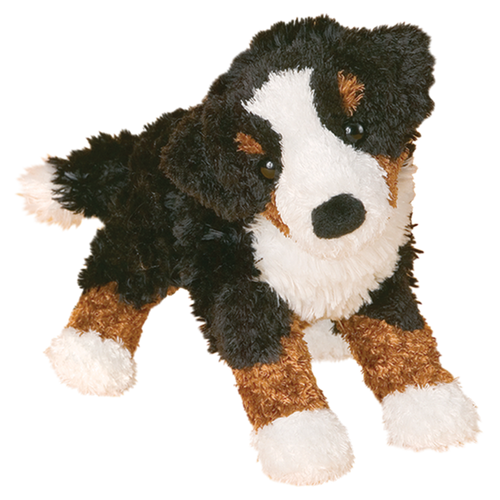Stevie Bernese Mountain Dog By Douglas