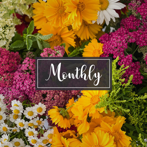 Monthly Flower Subscriptions - Starting at 3 Months