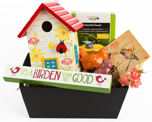 Birds, Bugs, & Butterflys  Gift Box