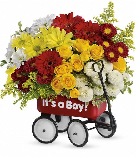 Baby's Wow Wagon Boy- Maple Grove