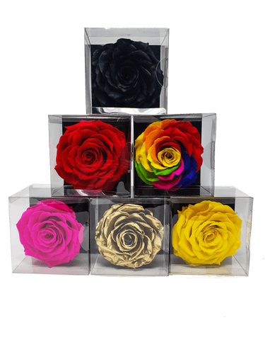 Preserved Real Roses - Lasts Forever
