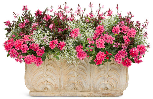 """24"""" Outdoor Window Box  