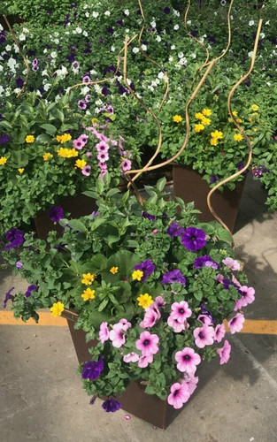 """14.25"""" Outdoor Combo Patio Pot  