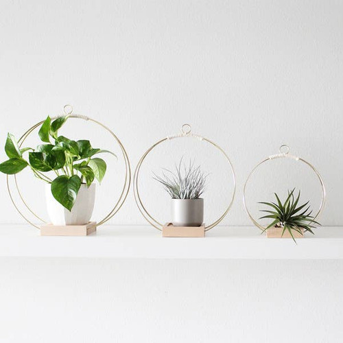 The Plant Hanger- By Braid and Wood