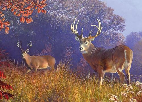 Deer Puzzle in Tin - 1000 Pieces