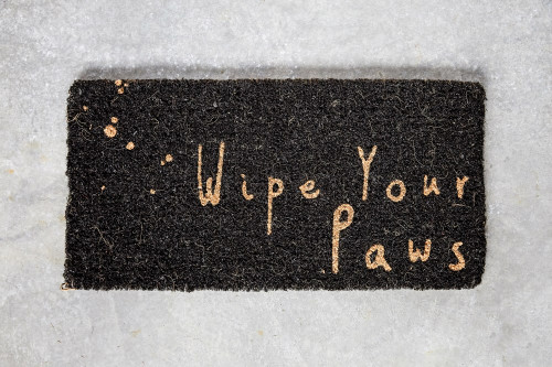 """""""Wipe your paws.."""" 32"""" x15"""" Natual Sisal Black Doormat by Creative Co-op"""
