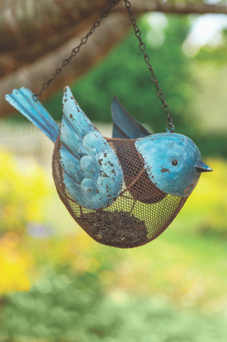 Blue Bird - Bird Feeder