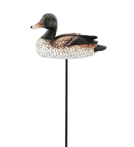 Mallard Duck  Pick
