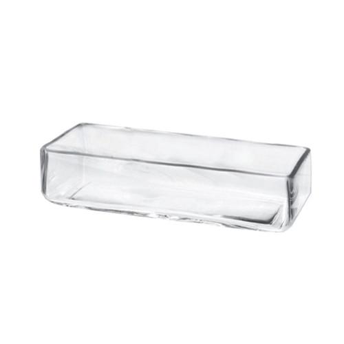 "12"" x 4"" Modern Proportion Retangler Glass Bowl- Glass"