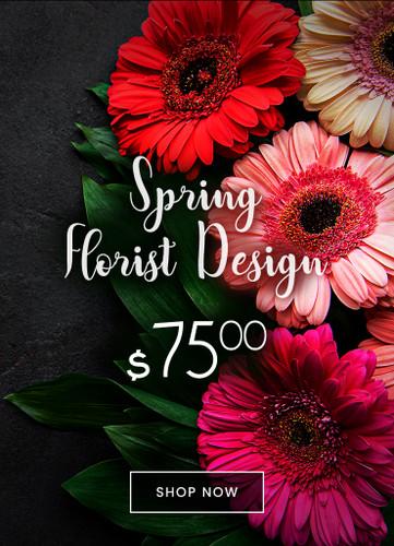 $75 Spring Designers Choice