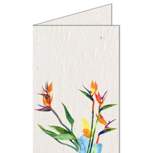 Growing Paper Greeting Card - Seed Infused Paper by Koru Street