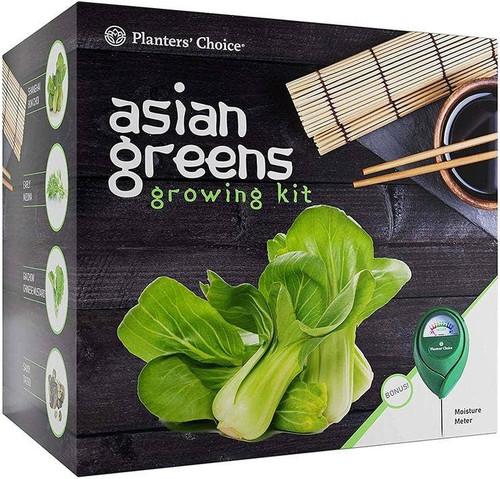Asian Greens Growing Kit