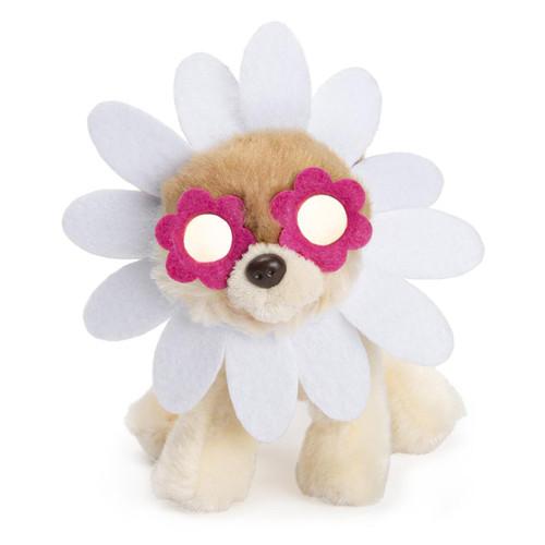 "6"" Itty Bitty Boo  Daisy Plush  by GUND"