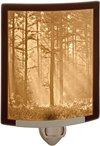 Woodland Sunbeam Curved Night Light