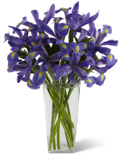 Iris Riches Bouquet