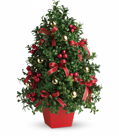 Deck the Halls Tree ~ Fresh Evergreens  & Floral