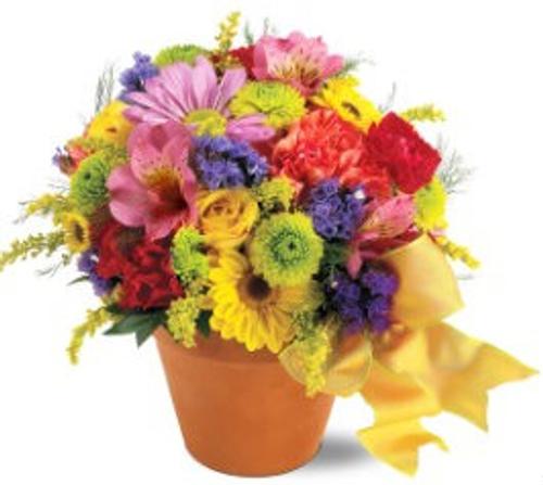 HCMC Fresh Blossom Potpourri Gift