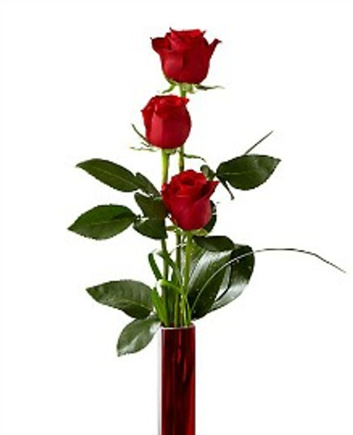 Deeply Devoted 3 Red Rose Bouquet - Premium