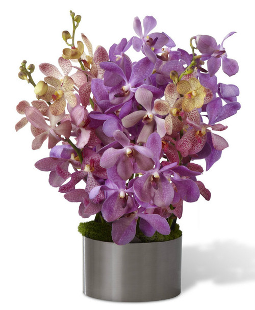 Irresistible Orchid Bouquet