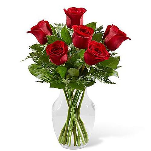 6 Red Rose Simply Enchanting Roses