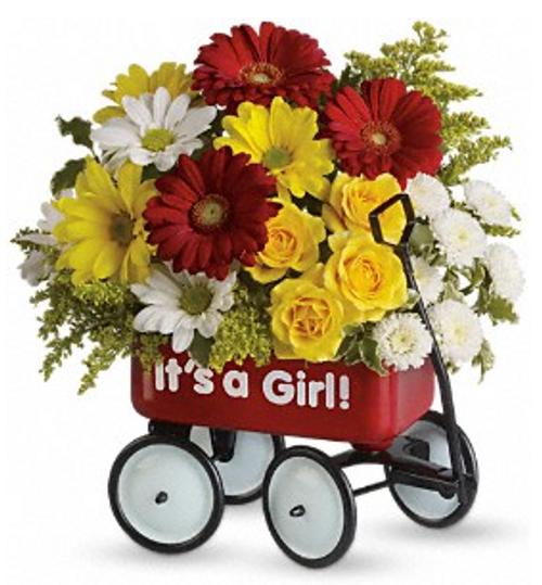 HCMC Baby's Wow Wagon Girl