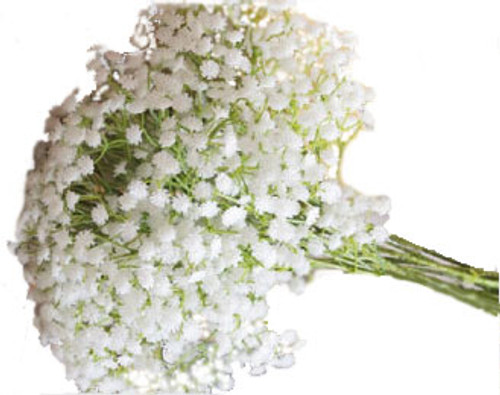 Baby's Breath 10 Stems Bunch - White  LOCAL/MPLS DELIVERY ONLY